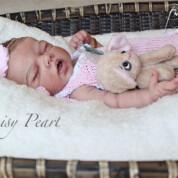 Daisy Pearl